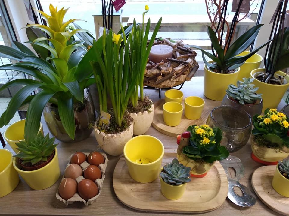 potten, aardewerk, glas, decoratie - Bloemen en Planten Verheijen Neeroeteren